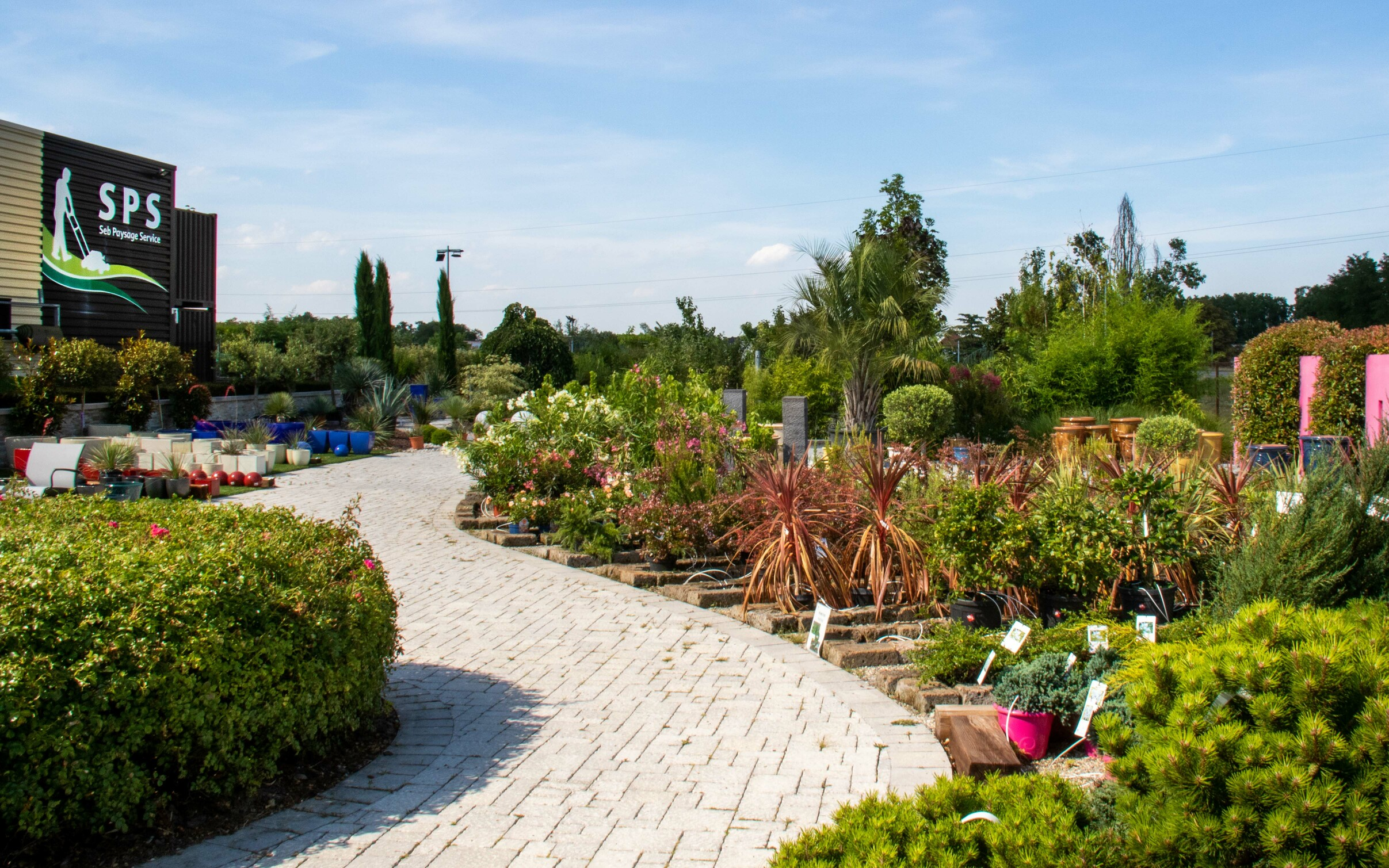 Plantation d'arbuste Bourgoin Jallieu